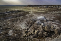 Painted Desert of the Petrified Forest