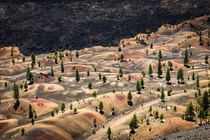 Painted Dunes at Lassen Volcanic National Park