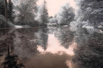 Palace Park Pond in Apeldoorn The Netherlands in infrared