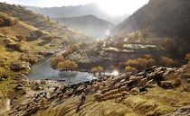 Palangan Village Iran by Amos Chapple