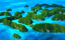 Palau - Worlds First Shark Sanctuary