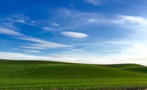Palouse WA - looks straight from your Windows XP wallpaper  x