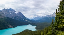 Panorama of Peyto Lake Alberta Canada