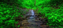 Parfeys Glen is Wisconsins first State Natural Area and its a beautiful place