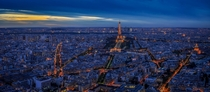 Paris at night from Montparnasse Tower  by Mengze Yuan