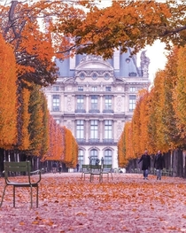 Paris Is Moveable Feast Bienvenue  Paris amp LAutomne  Paris amp Jardin des Tuileries amp Muse du Louvre - destination Rve Immortaliser le moment pour rester grav dans le marbre et crbrer le moment Beauty Parisian by albparis_ Bon Week-End Week