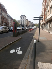 Parking-separated bicycle lane with a public bike rental station in Lille France