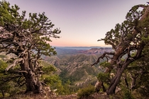 Parted trees reveal an amazing view overlooking Sedona AZ