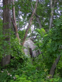 Partially collapsed wooden shack in Collin County TX Valensiakol