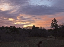 Pastel Sunrise on the Palmer Divide Colorado
