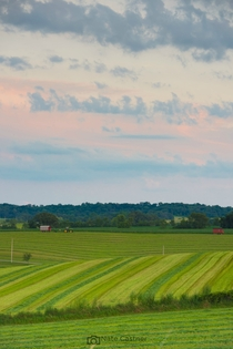 Pasture Pastels by Nate Castner  Southern Wisconsin USA
