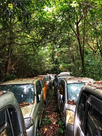 Path of abandoned cars leading to my in-laws tomb Okinawa