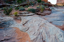 Patterns on the ground at Arches National Park Utah