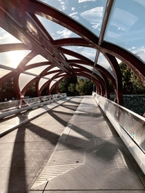 Peace Bridge In Calgary Alberta Designed by Santiago Calatrava