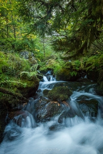 Peaceful stream below the massive Watson Falls in Oregon