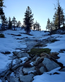 Peaceful stream in the snow at sunset Sierra National Forest CA USA