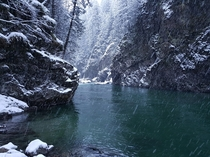 Peacefully fishing for steelhead in a remote canyon on the Chehalis River BC Canada