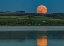 Peach-colored moon rising in Alberta Canada Photo by Diane Kawaza