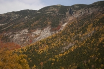 Peak foliage in the White Mountains of New Hampshire Crawford Notch State Park