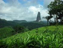Peak in the jungle Sao Tome amp Principe islands Africa  By Filippo Aragone