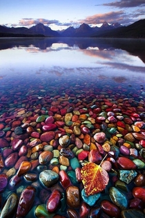 Pebble Shore Lake Glacier National Park Montana