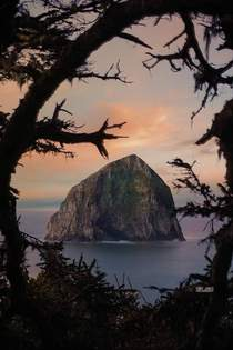 Peekaboo at Haystack Rock Cape Kiwanda Oregon x