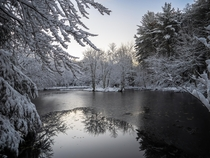 Peering in from the corner of a snow-covered pond in Massachusetts