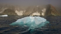 Penguins standing on receding Iceberg
