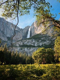 Perfect Lighting - Yosemite Falls