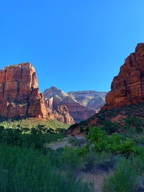 Perfect morning at The Grotto - Zion National Park UT