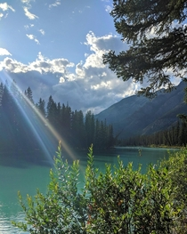Perfect sunlight at Bow river