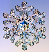 Perfectly Hexagonal Snowflake The way snowflakes grow depends strongly on the temperature and humidity in the clouds This is summarized in the Nakaya Diagram after Japanese physicist Ukichiro Nakaya who discovered this behavior by growing snowflakes in hi