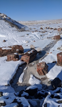 Petrified Forest National Park after a winter storm