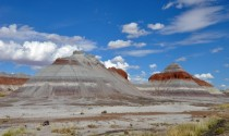 Petrified Forest National Park USA