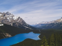 Peyto Lake Banff National Park Alberta