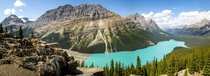 Peyto Lake - Canadian Rockies - Alberta