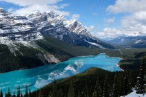 Peyto Lake in Alberta Canada by Sunny Herzinger