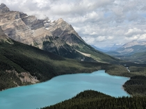 Peyto Lake Lookout Alberta Rockies