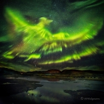 Phoenix Aurora over Iceland I know this is crazy looking and youll probably say its fake but NASA has approved it Photo taken in  So I wont be surprised if its a repost Image credit is Watermarked