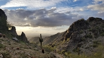 Phoenix Mountains Arizona
