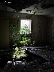 Photo of the Top floor of an abadoned farm house in Hull england taken by myself