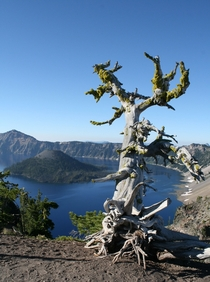 Pic #1 - OC Crater Lake Oregon  Early morning Aug