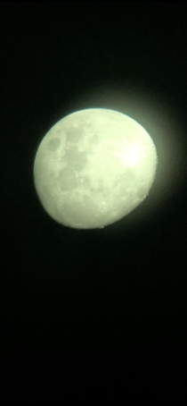 Picture of the full moon through my telescope captured with my phone camera