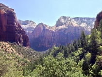 Pictures never do it justice but Zion National Park is really something to marvel