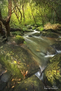 Piles Creek in the Brisbane Water National Park on the Central Coast of New South Wales Australia