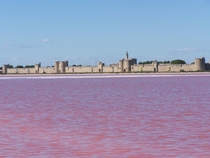 Pink salty waters near the city walls of Aigues-Mortes in the South of France