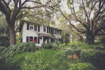 Plantation style home among the spanish moss Florida