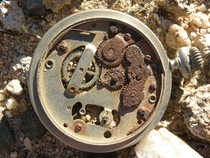 Pocket watch thats seen better days