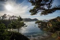 Point Lobos CA  By Hendrik Botha