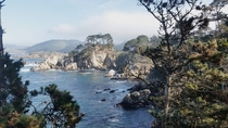 Point Lobos Carmel CA
